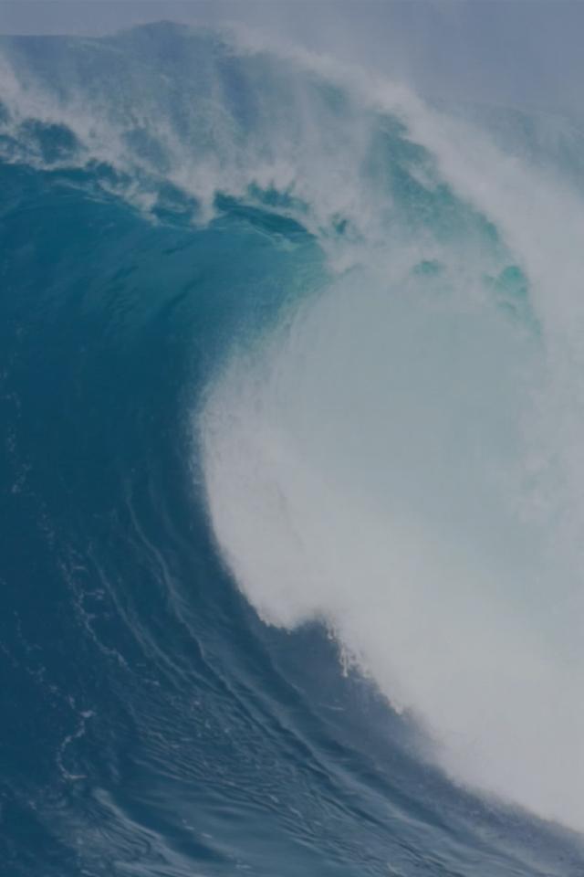 LIGANOVA | What we believe in | digital wave