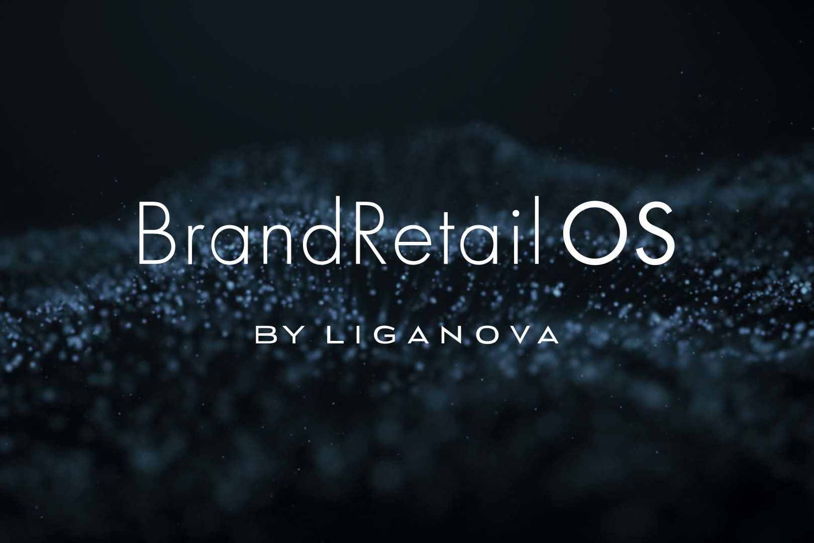 LIGANOVA | What We Do | POS Campaigns | Tech-supported value chain